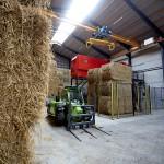 Ulsted landbrug